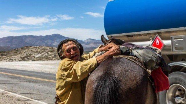 La historia de Don Hernandez, un trashumante del norte neuquino