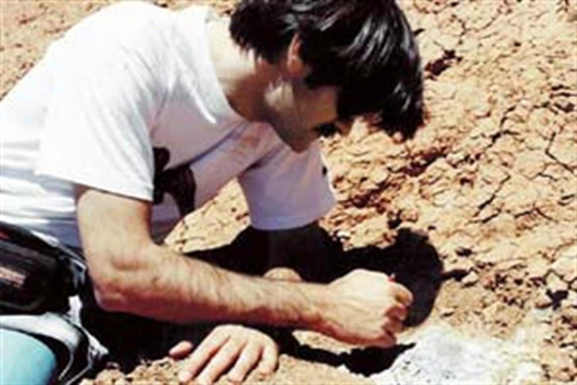 El paleontólogo Rodolfo Coria trabajando en uno de los nidos de Auca Mahuevo.
