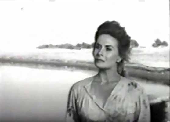 Nelly Meden interpretó a Carmen Funes (La Pasto Verde) en la película Plaza Huincul (Pozo uno) de Lucas Demare, estrenada en 1960.