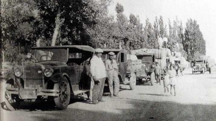 Flota de camiones de la empresa Álvarez-Maccarinni