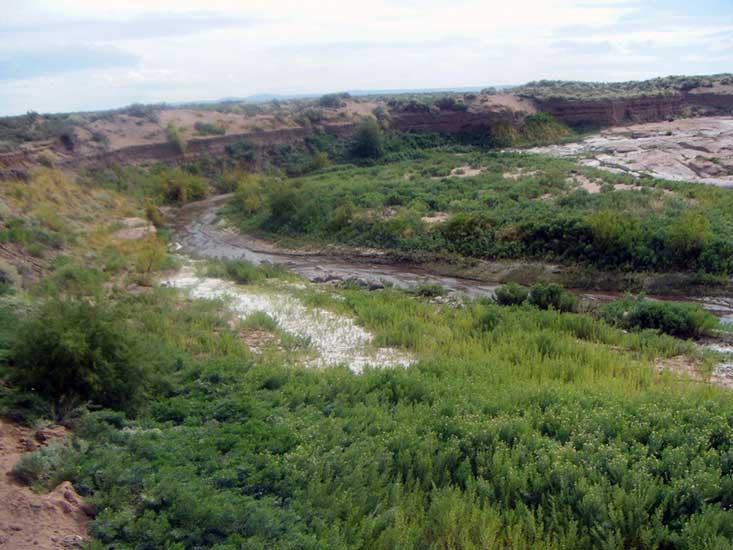 Arroyo Carranza, a mitad de camino entre Añelo y Rincón de los Sauces