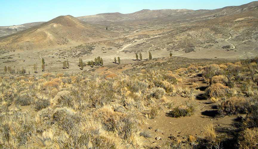 Proximidades de la estancia Sañicó.