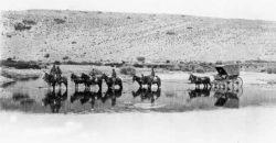 Viaje de Gabriel Carrasco a Chos Malal - 1902