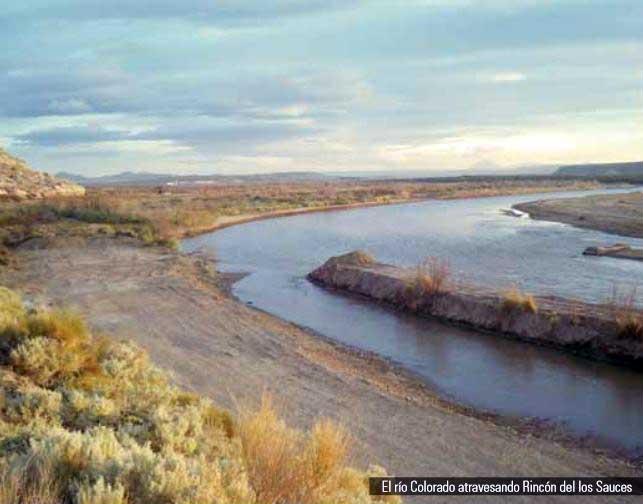 Río Colorado atravesando la zona de Rincón de los Sauces.