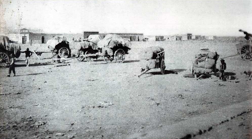 Catangos en la estación Neuquén - 1902 - Sistema provincial de Archivos.