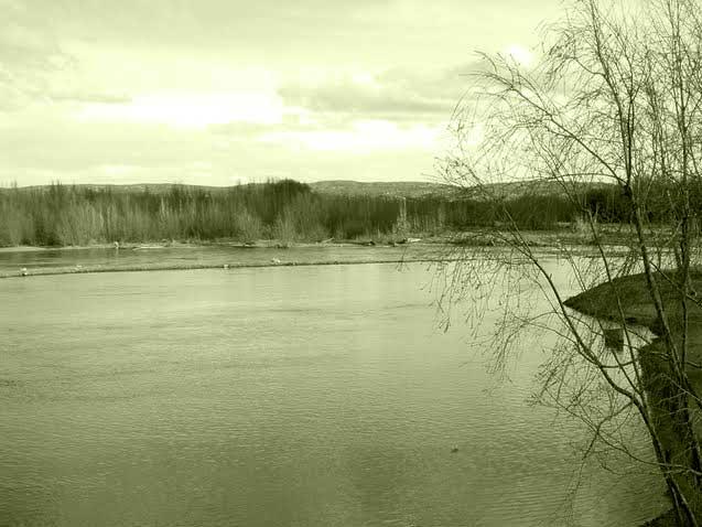El río Limay