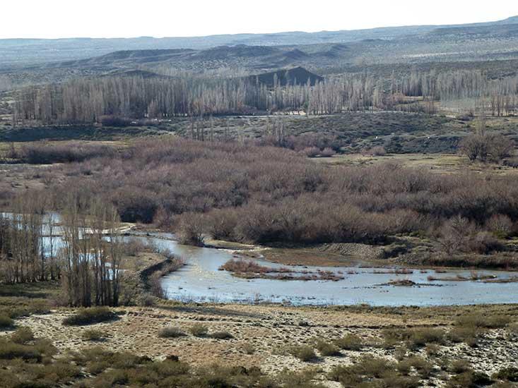 Arroyo Covunco