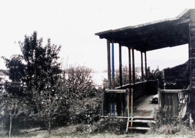 Villa la Angostura - Colonia Agrícola Pastoril