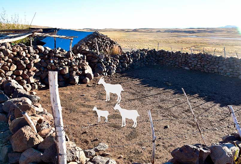 Puestos de pobladores del ANP El Tromen