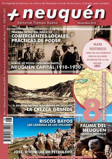 Revista Más Neuquén nº 8