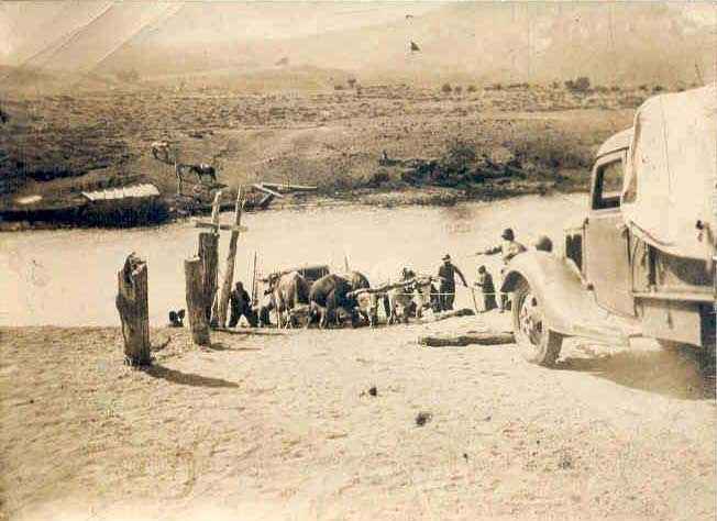 Balsa sobre el río Aluminé, sacando un camión con yunta de bueyes y otro camión - Década del '40
