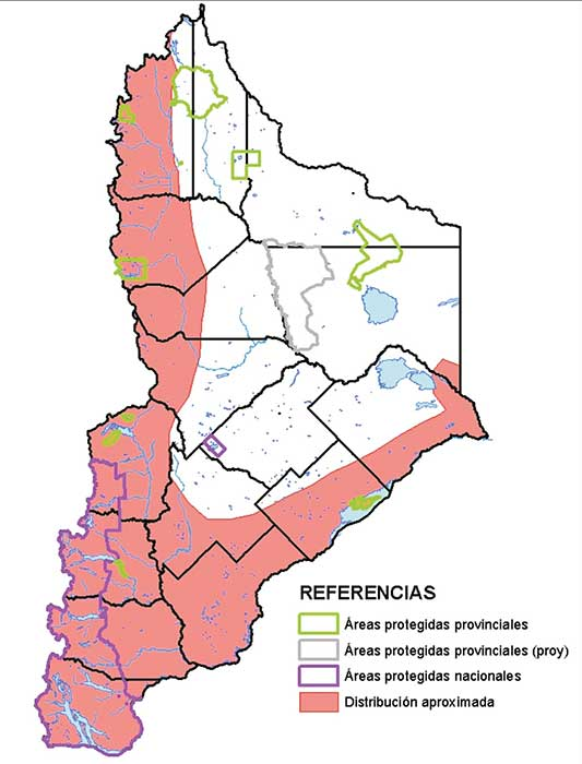 Área de distribución en Neuquén del Cauquén Real.
