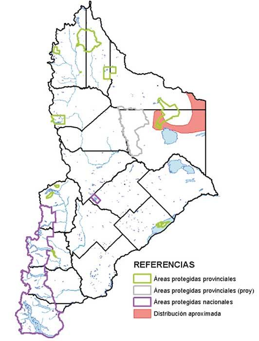 Área de distribución en Neuquén  del pichiciego