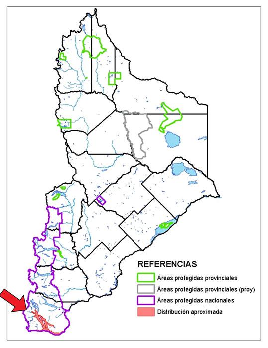 Área de distribución en Neuquén del cormorán imperial