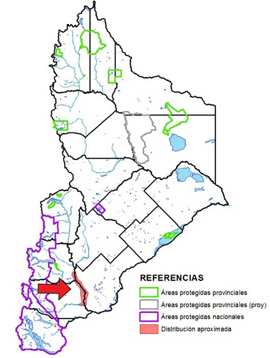 Áreas de distribución en Neuquén del a gallineta chica.