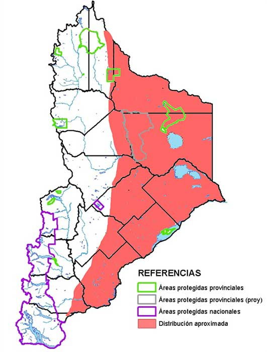 Área de distribución en Neuquén del Cuis chico (Microcavia australis).
