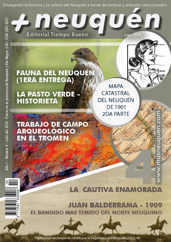 Revista Más Neuquén número cuatro.