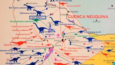Dinosaurios de la Cuenca Neuquina