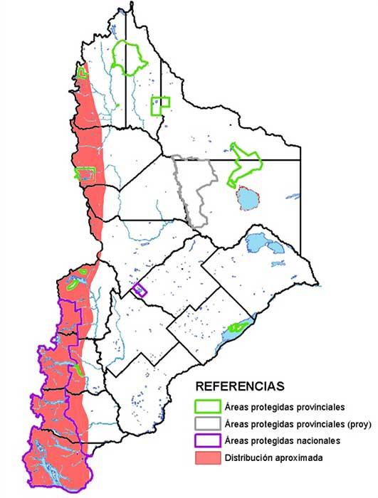 Distribución en Neuquén del picaflor rubí (Sephanoides sephaniodes)