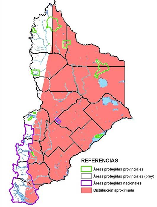 Distribución en Neuquén del loro barranquero (Cyanoliseus patagonus)
