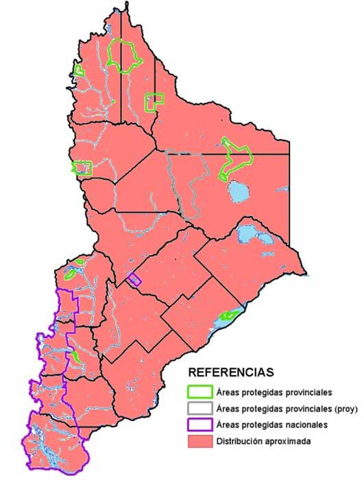 Distribución en Neuquén del Piche patagónico (Zaedyus pichiy)