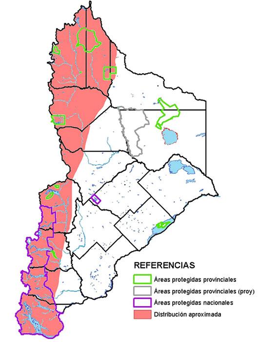 Distribución en Neuquén del Matamico Andino (Phalcoboenus megalopterus)