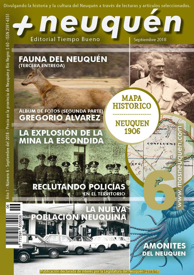 Revista Más Neuquén número 6