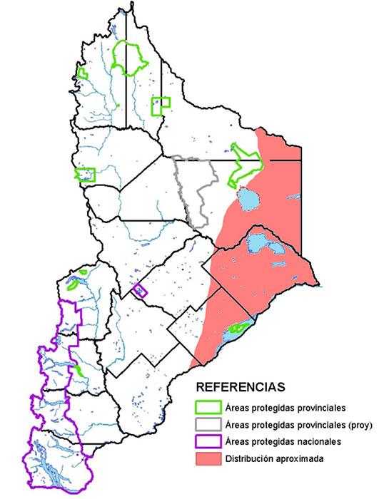 Distribución en Neuquén de la Mara