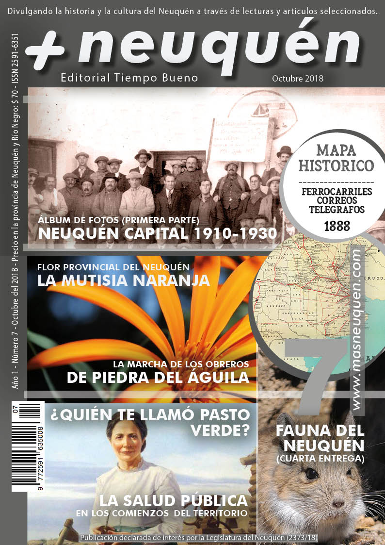 Revista Más Neuquén número 7