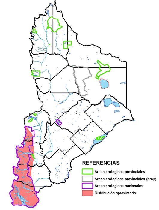 Distribución en Neuquén del Pudú.