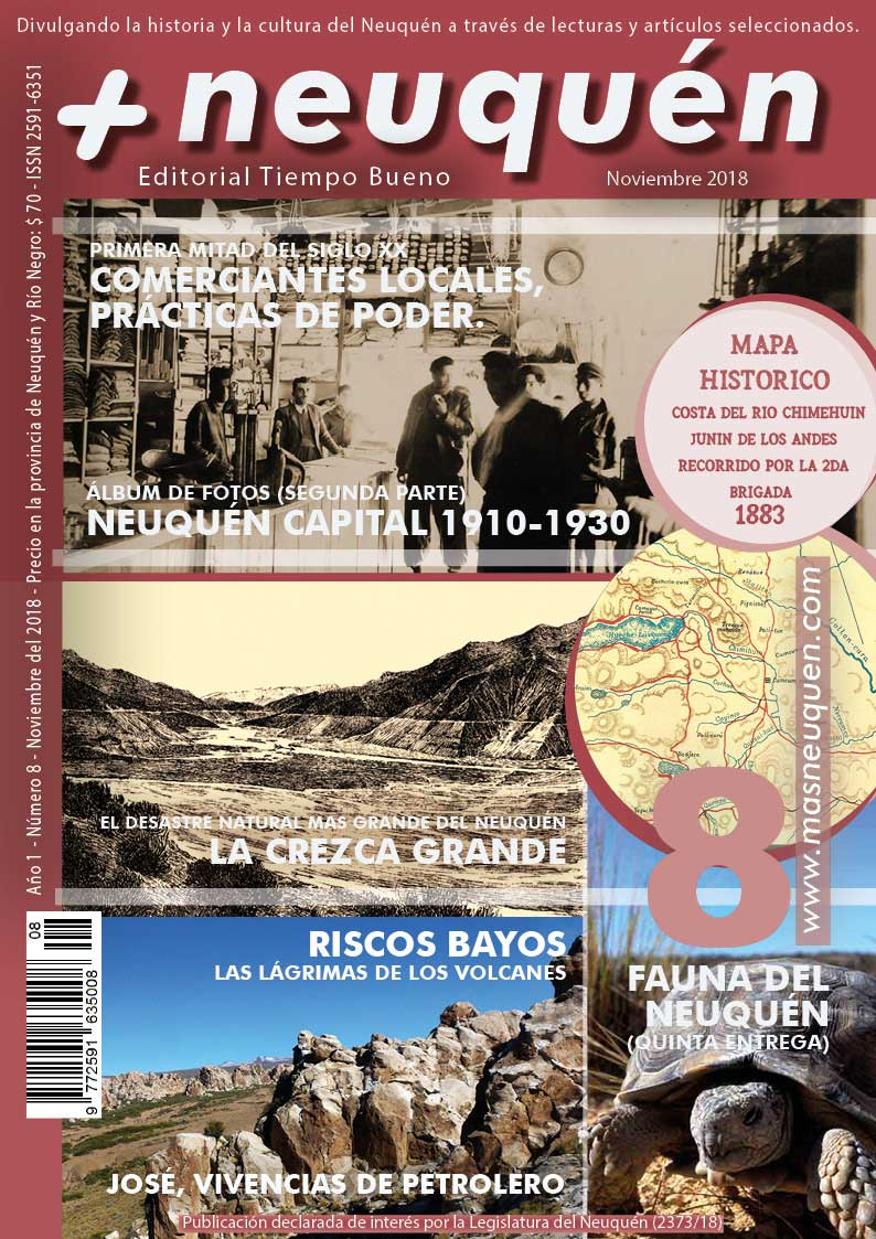 Revista Más Neuquén número 8