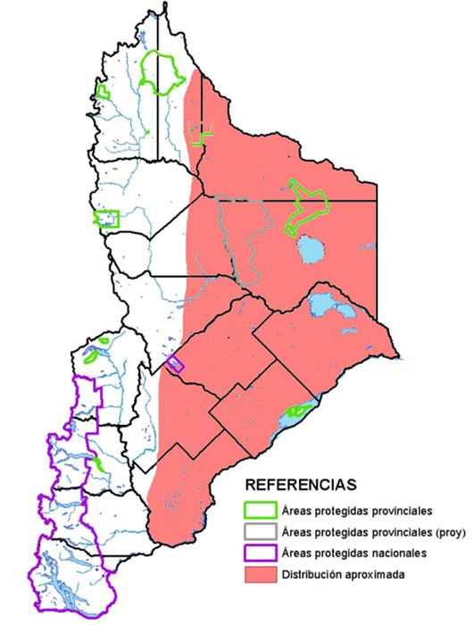 Distribución en Neuquén de la Garza Mora