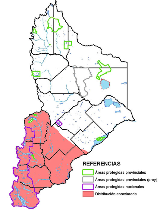Distribución en Neuquén del huroncito patagónico