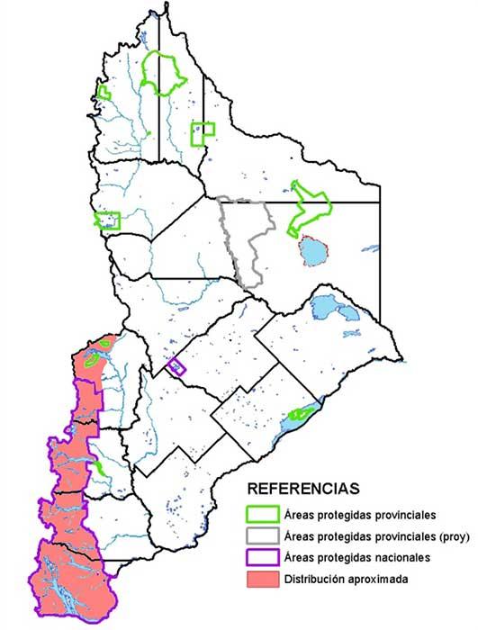 Distribución en Neuquén de la lagartija esbelta.