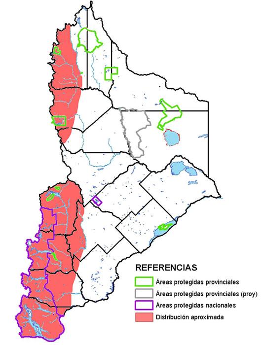 Distribución en Neuquén del rayadito.