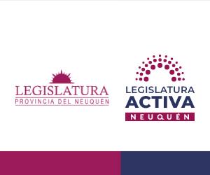 Legislatura Activa